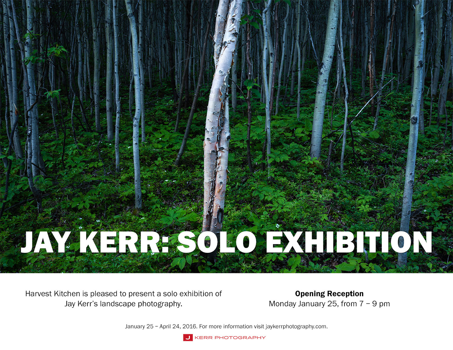 JAY KERR: SOLO EXHIBITION